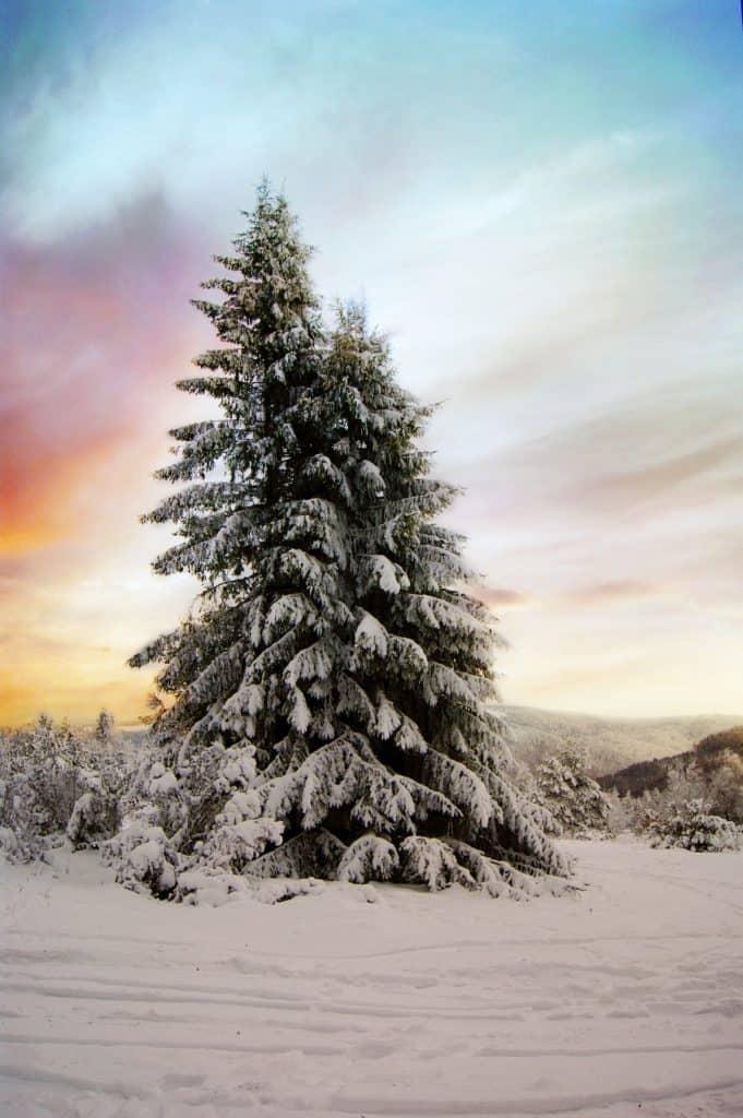 winter wallpaper aesthetic