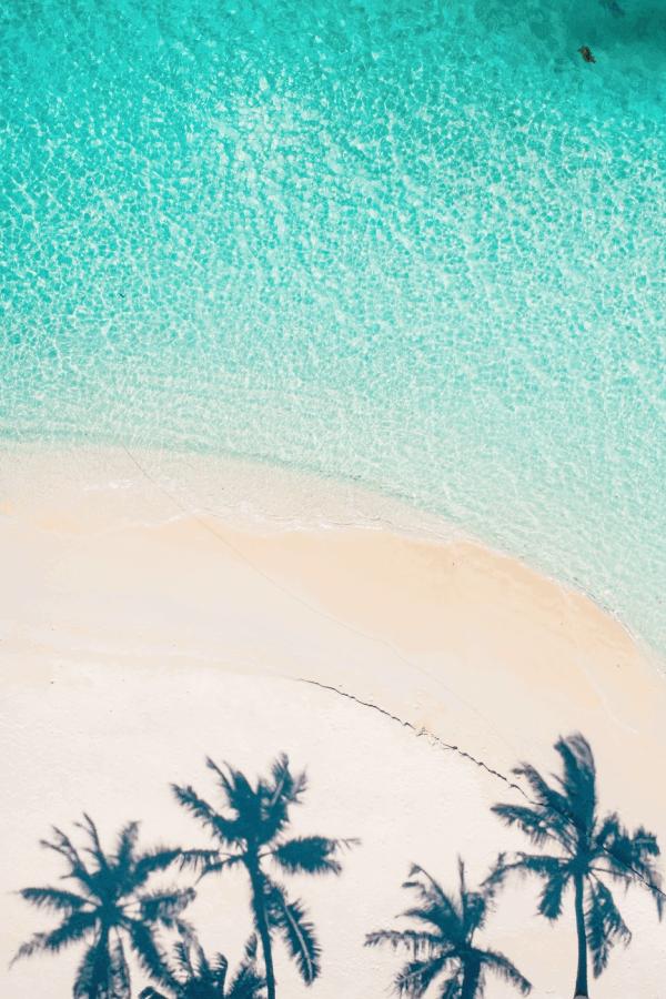 vacation wallpaper, beach wallpaper, beach aesthetic, tropical wallpaper, sand wallpaper, paradise wallpaper