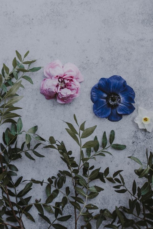 flower aesthetic wallpaper, flower aesthetic, flower wallpaper, pink flower aesthetic, white flower aesthetic, floral wallpaper iPhone, flower wallpaper iPhone, floral background , dark floral aesthetic