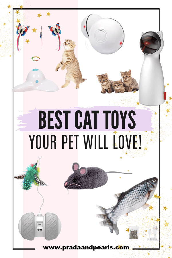 8 Best Motorized Cat Toys Your Pet Will Love!