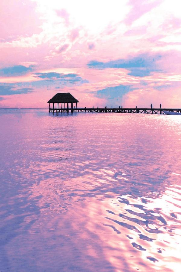 beach wallpaper iPhone, pink wallpaper, pink water, pink ocean, tropical Wallpaper, pastel aesthetic, rainbow aesthetic