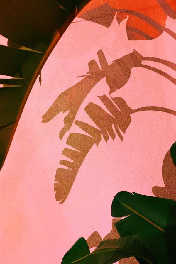 pink wallpaper, pink wallpaper iPhone, pink aesthetic, cute pink wallpaper, pink background, pink background iPhone, pink wallpaper girly, palm tree wallpaper, palm tree aesthetic