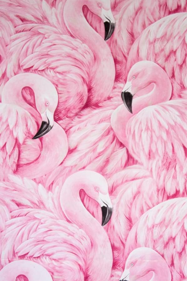 pink wallpaper, pink wallpaper iPhone, pink aesthetic, cute pink wallpaper, pink background, pink background iPhone, pink wallpaper girly, pink flamingos